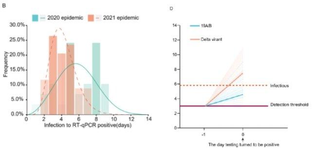 바이러스가 검출되는데 걸린 시간(B)과 검출된 바이러스 양(D)을 나타낸 논문 그래프. /자료='Viral infection and transmission in a large well-traced outbreak caused by the Delta SARS-CoV-2 variant' 논문
