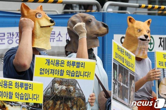 초복인 지난 11일 한국동물보호연합과 한국채식연합 회원들이 개 가면을 쓰고 개 도살 중단 촉구 기자회견을 하고 있다/사진=뉴스1