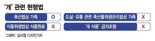 """[The W]반복되는 복날 '개고기' 논란…""""개식용, 선진국 중 유일"""""""