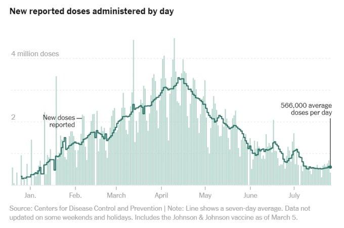 미국의 일일 백신 접종 건수와 일주일 동안의 평균 접종 건수 추이/사진=뉴욕타임스(NYT) 홈페이지 캡처