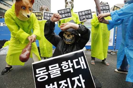 한국동물보호연합 소속 회원들이 6월 15일 오후 서울 광화문 광장에서 '동물학대 강력처벌 촉구' 퍼포먼스를 펼치고 있다./사진=뉴스1