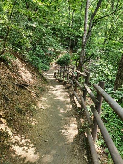 강남7산 종주 초반부인 구룡산 구간. 능선길보다 서울둘레길을 따라가는게 트레일러닝에는 제격이다.
