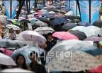 장마가 만들어낸 풍경 '우산은 필수'