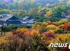 가을빛 물들어가는 궁궐의 아침