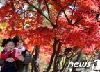 가을을 담다