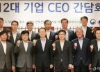 12대 기업 CEO 만난 백운규 장관