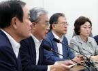대안정치회의