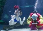'바닷속에서 보낸 새해 큰절'
