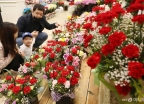 어버이날 앞두고 활짝 핀 꽃시장