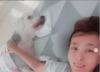 """김원희 """"암 투병 반려견, 예쁘게 떠나… 응원 감사"""""""
