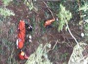 """""""버섯 캐서 올게"""" 실종된 50대, 4일 만에 산에서 숨진 채 발견"""