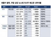애플카·쿠팡 뉴스에 자사주 전량 매도한 내부자