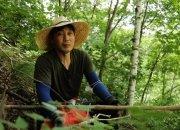 이혼 후 사라진 송종국…해발 1000m 산골에서 약초 캐며 자연인으로