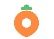 K-유니콘 16번째 주인공은 '당근마켓', 기업가치 3조원 찍었다