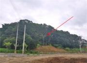 신도시 호재에 우르르…4.7억짜리 남양주 땅 40억에 팔렸다