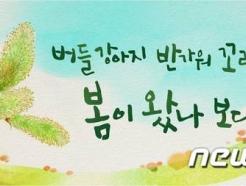'봄이 왔나보다' 서울시 꿈새김판 새 문안 공개