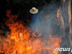 브라질, 아마존 화재 진압 위해 군병력 파병