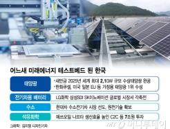 태양광·배터리·화학…한국은 미래에너지 테스트베드
