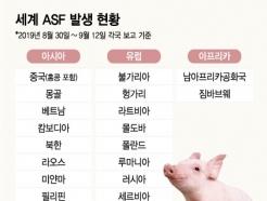 [MT리포트]한국상륙 '돼지열병' 세계 어디까지 퍼졌나