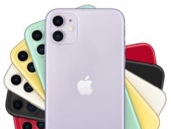 '기대 이상이다'…아이폰11, 초반 관심끌기는 성공