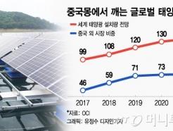 늪에 빠진 태양광은 왜 탈 중국에 주목하나