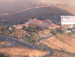 염소떼, 美캘리포니아 산불에서 레이건 도서관 구했다