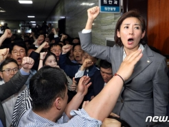 나경원 원내대표 13일 '패스트트랙' 검찰 출석