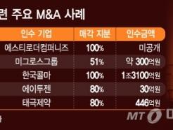 [MT리포트]'코스메슈티컬' IB 큰 장…제약사·화장품 M&A↑