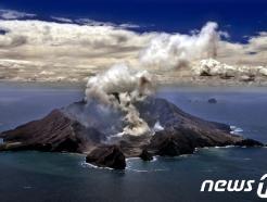 50여명 찾은 뉴질랜드 화산 급작스레 폭발…최소 5명 사망(종합)