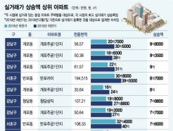 1년새 급등한 서울아파트는...가격 '개포주공1' 상승률 '양평 삼환'