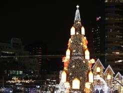 [사진] '청계광장에 대형 크리스마스 트리가'