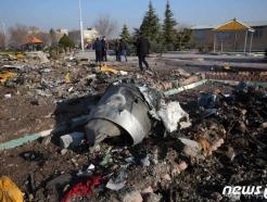 이란 추락 '보잉 737', 한국서도 125대 날아다닌다