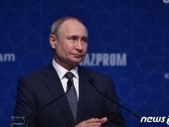 美-이란 충돌에 '웃는' 러시아…중동내 존재감 커진다