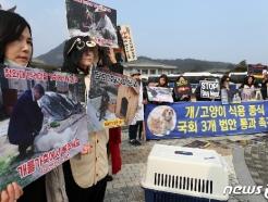 [사진] 동물권 단체 '개는 가축이 아닙니다'