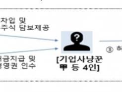 금감원, 올해 무자본 M&A·총선테마주 집중 감시