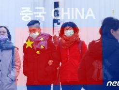 [사진] 한국도 중국발 '우한 폐렴' 비상