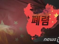 """'우한폐렴', 中 31개성 중 29개성 뚫었다…""""의료물자 부족 심각"""""""