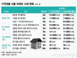 """""""9억-15억-초고가""""… 규제로 세토막 난 서울아파트"""