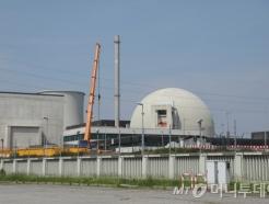 끔찍한 사고 겪은 일본조차…원전 포기 못하는 까닭