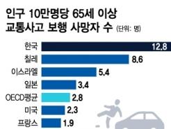 """韓, 교통사고 보행자 사망자율 OECD '최고'…""""노인이 절반"""""""