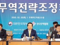 코로나19 대응 '확대무역전략조정회의'