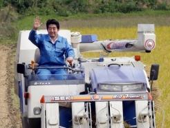 [인싸Eat]'韓불매운동', 아베를 시진핑에 목매게 만들었다