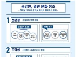 금감원, 전문성 높여라…'전문감독관' 도입