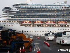 '방역 엉망' 日크루즈 승객들, 미국·호주서 잇단 확진