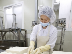 [사진] 치즈 만드는 정성어린 손길