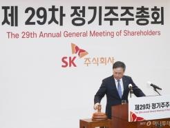 SK, 29차 정기주주총회 개최