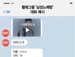 """""""네발로 기면서 짖어""""…텔레그램엔 '남성노예방'도 있다"""