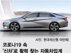 글로벌 흔들리지만…車업계, 신차로 '내수 빛' 볼까