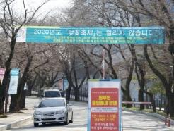 순천향대, 코로나19 감염 예방 위해 '벚꽃광장' 미개방