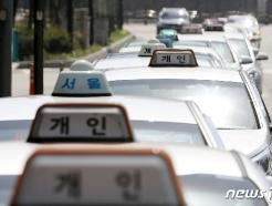 [사진] '택시 가동률 40% 하락'